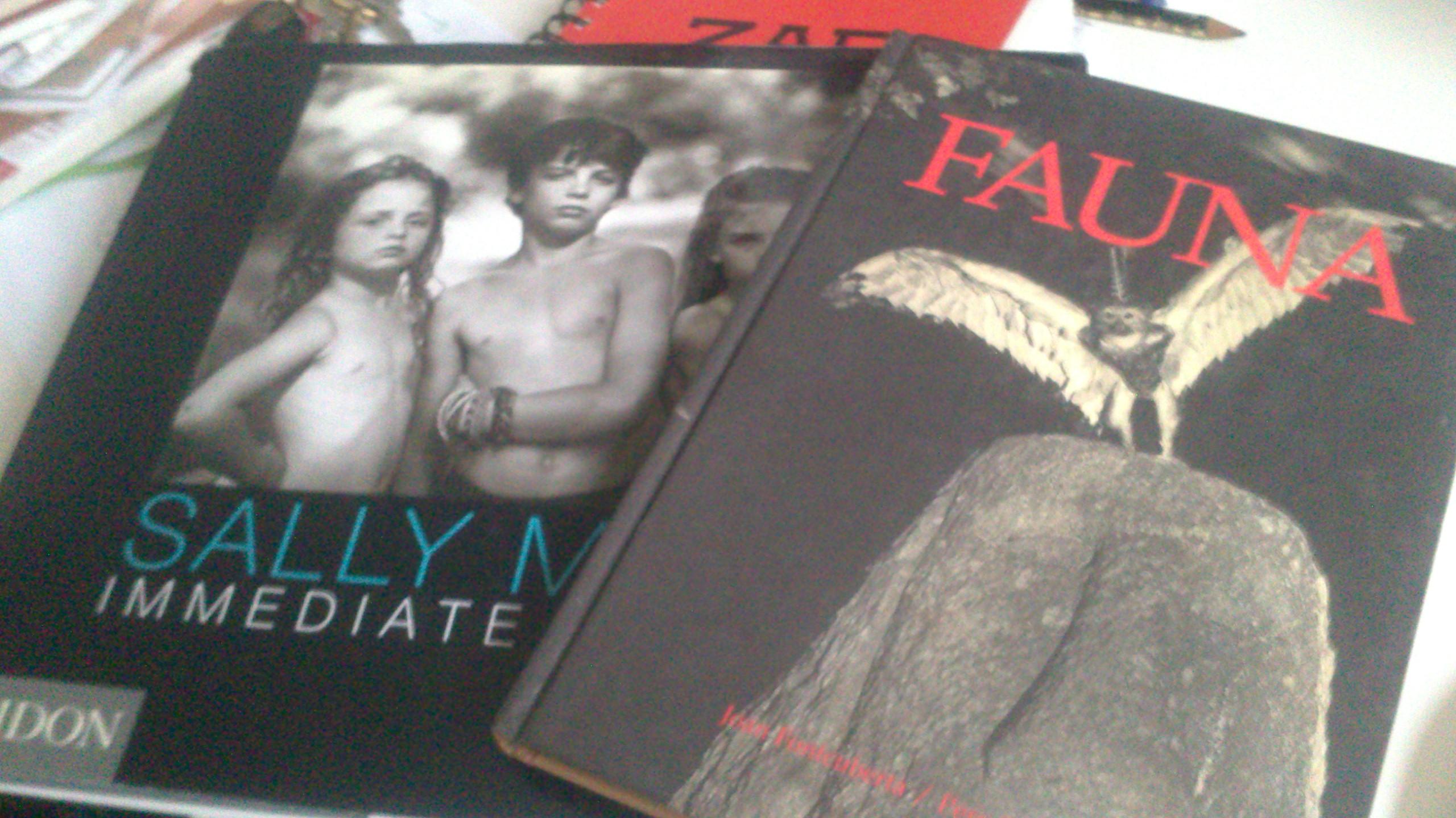 """llibres de """"sally mann"""" i """"Fontcuberta i Formiguera"""""""